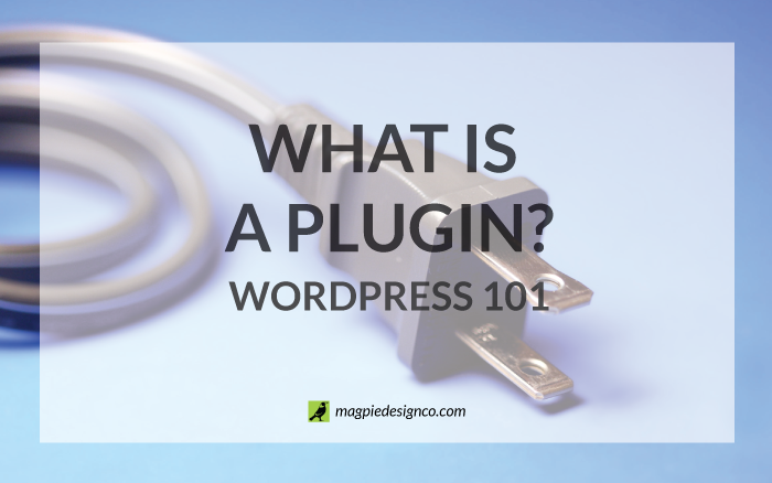 What is a plugin?